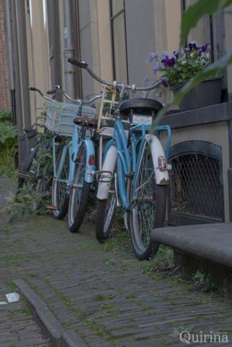 Quirina - Deventer - Iets Blauws (2)